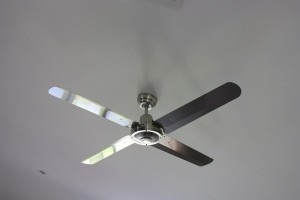 Ceiling Fans - Beachmere Electrician